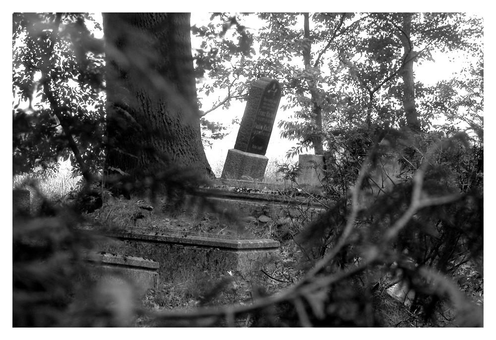 Der vergessene Friedhof