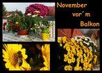 Der vermutlich letzte warme Novembertag