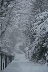 Der verschneite Berg / Weg