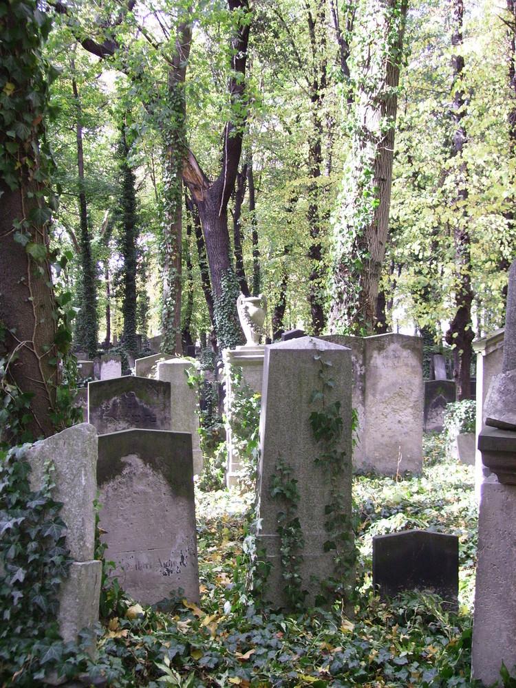 Der verwunschene Friedhof