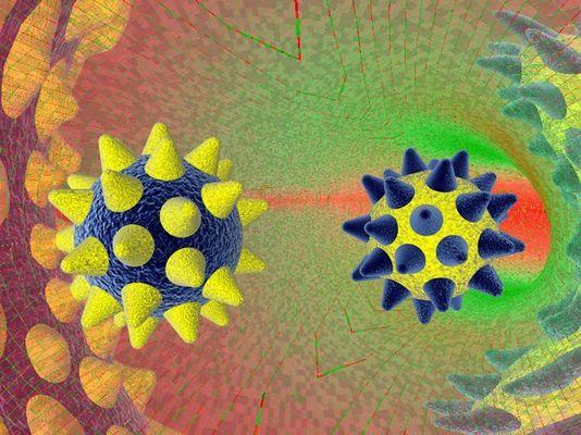 Der µ-Virus