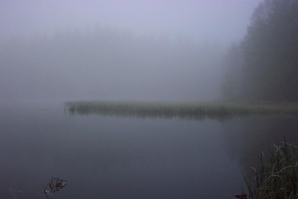 Der Vogtlandsee im Nebel