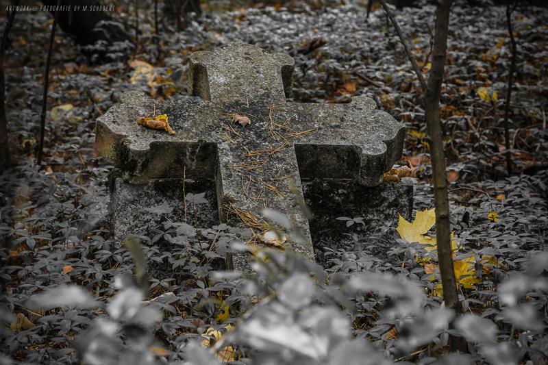 Der Wald der Seelen _01
