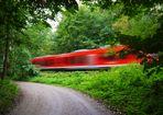 Der Wald-Express