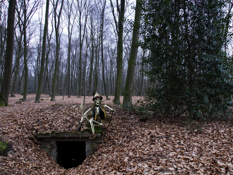 Der Waldpirat