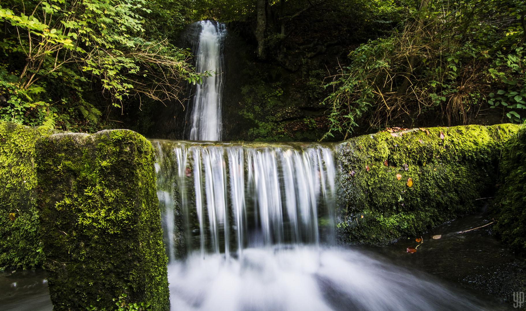 Der (Wasserfall) Bach im grünen