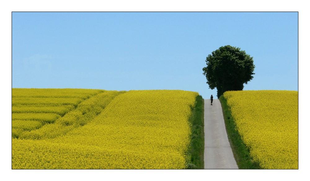 Der Weg 2