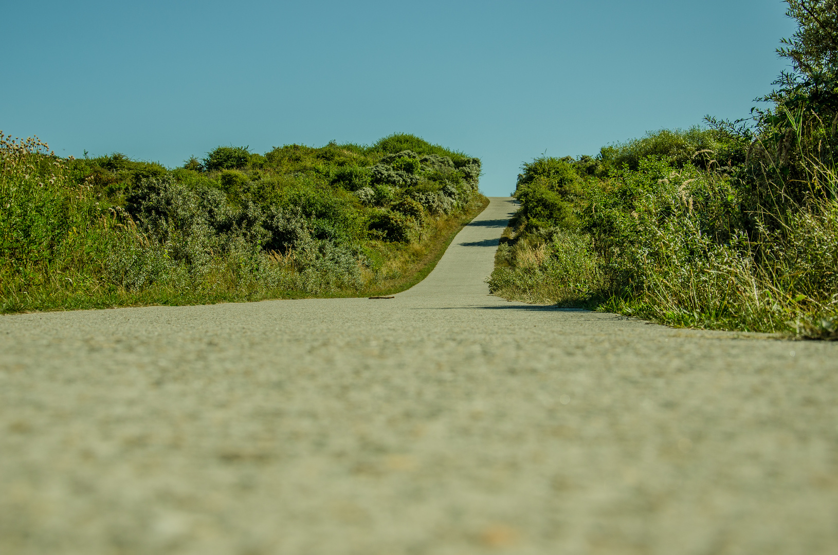 Der Weg....