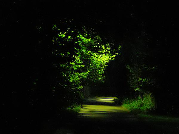 Der Weg
