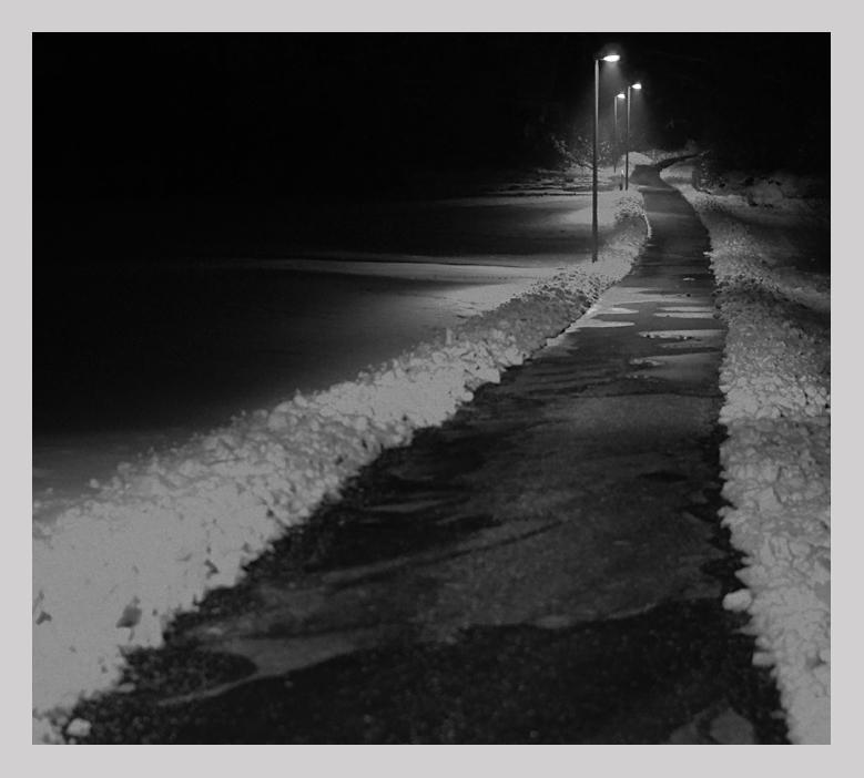 der Weg bei Nacht II
