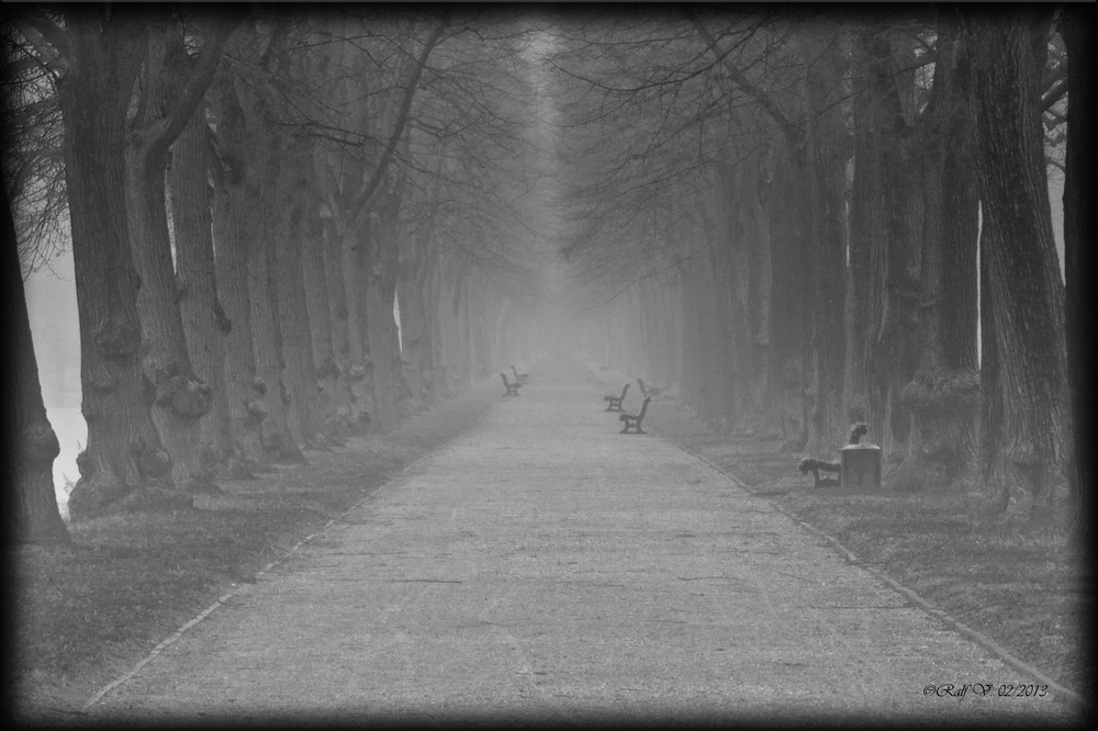 Der Weg . . . . .
