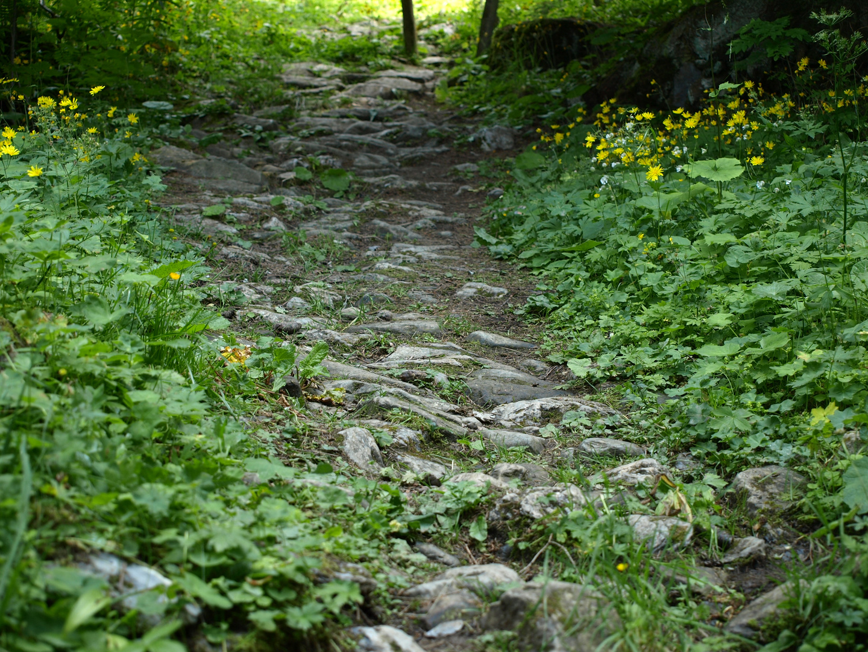 Der Weg, die Wahrheit, das Leben....