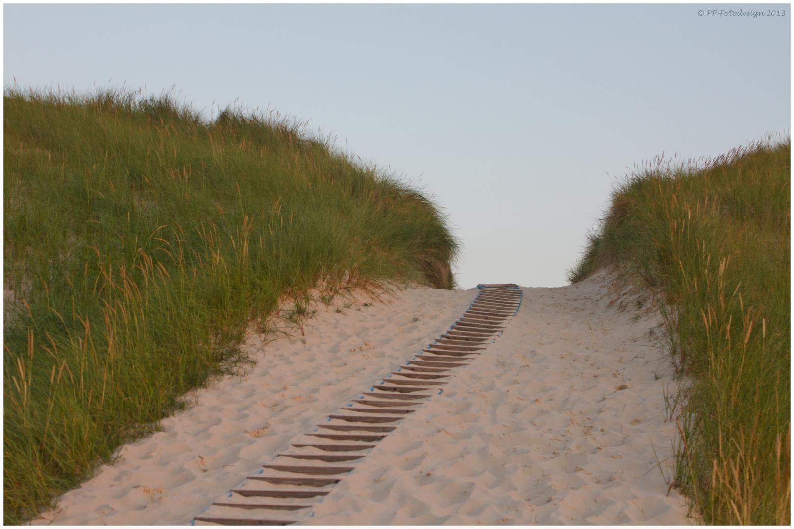 Der Weg durch die Dünen von Amrum