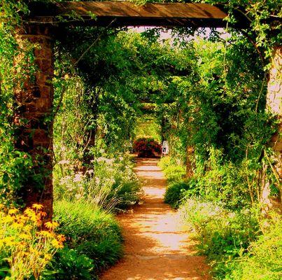 Der Weg durch´s Grüne