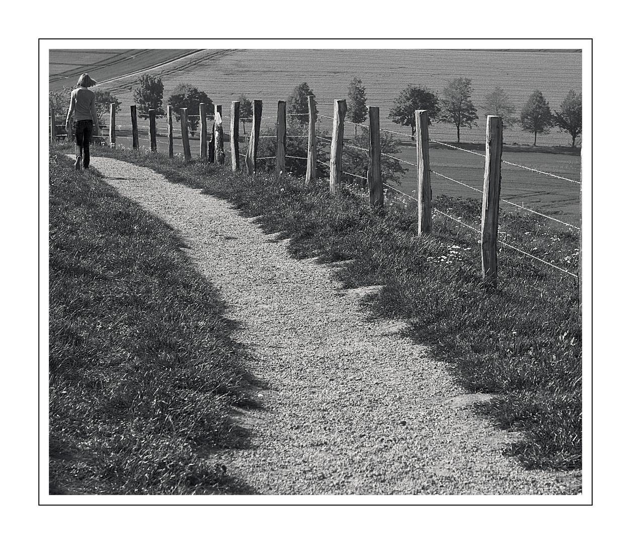 -Der Weg hinab-