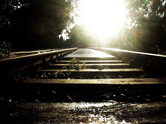 Der Weg in ein neues Leben.