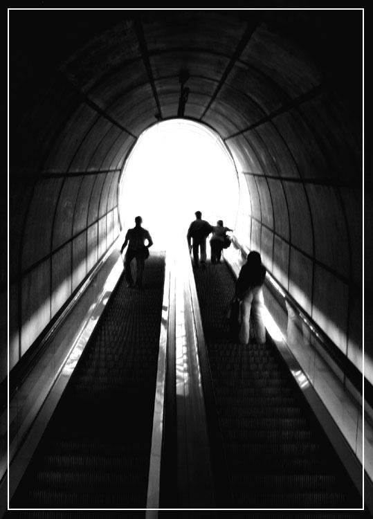 Der Weg ins Licht...