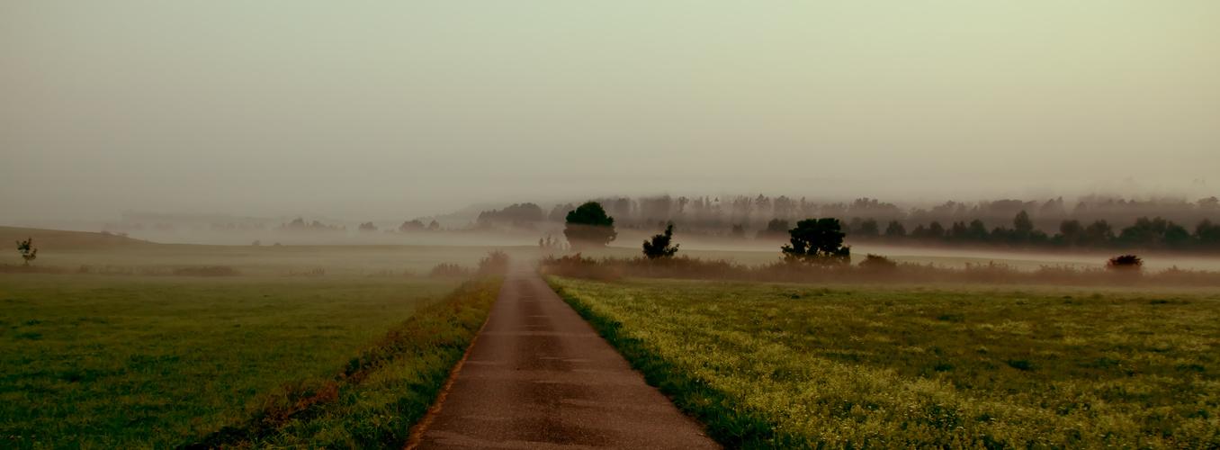 Der Weg ins Nebelland