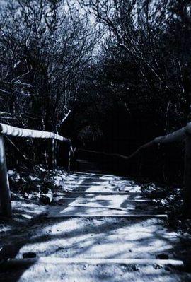 Der Weg ins Unbekannte