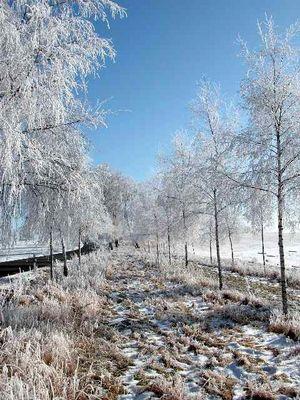 der Weg ins Winter-Märchenland