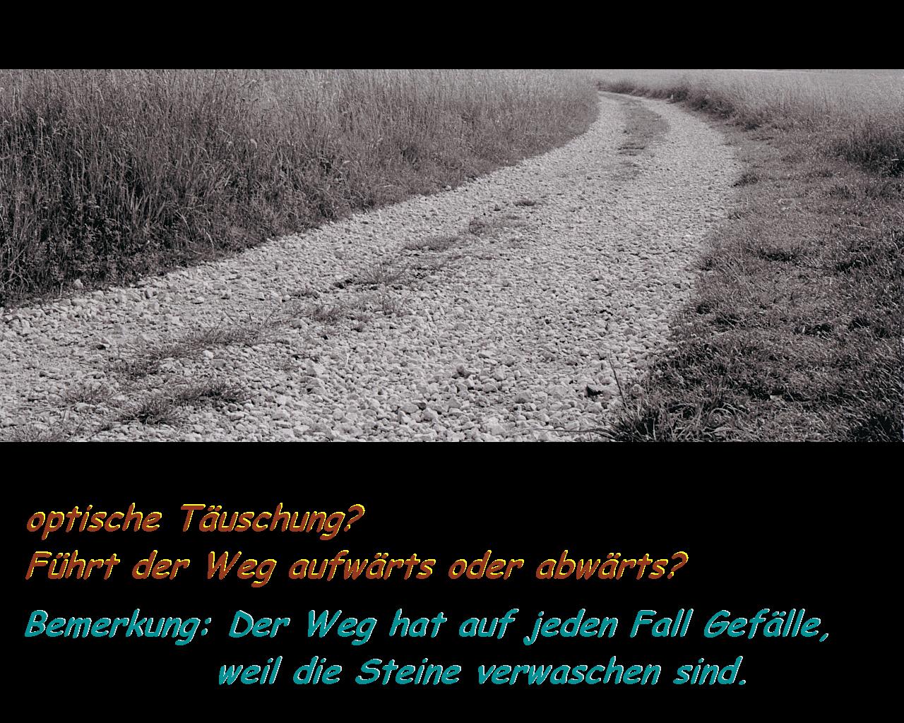 """""""Der Weg ist das Ziel"""" (Laoste)"""