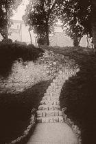 ***Der Weg nach oben***