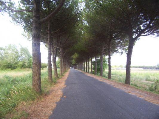 Der Weg ohne ende