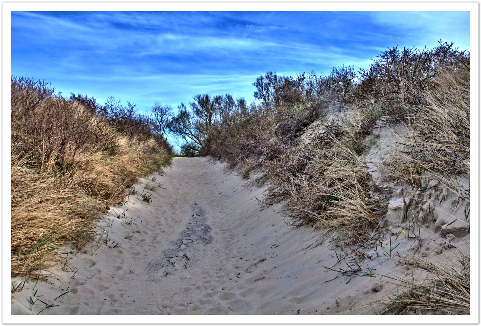 Der Weg vom Strand