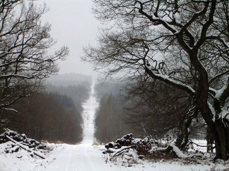 Der Weg zu zweit ... ist halb so weit.