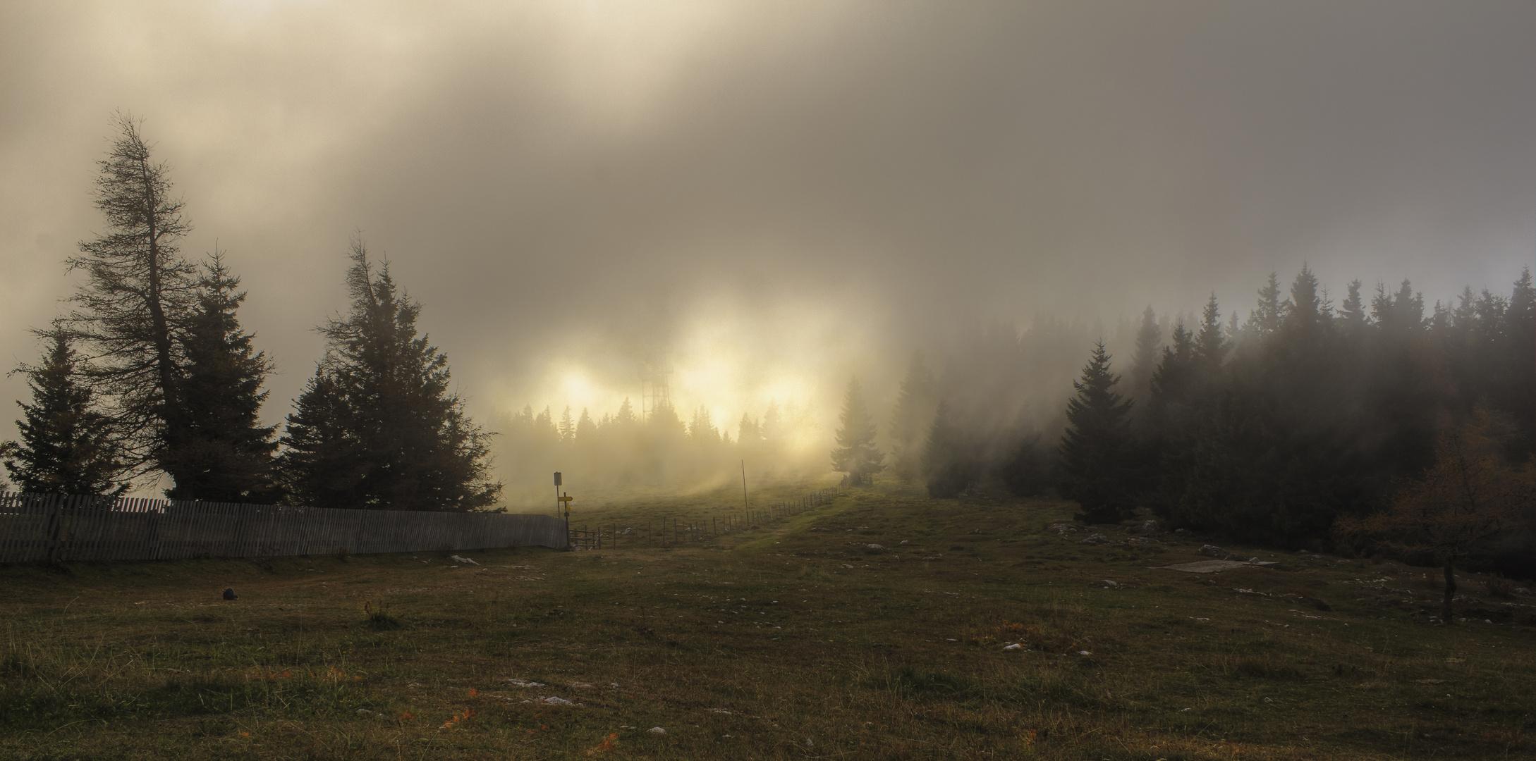 Der Weg zum Gipfel durch den Nebel