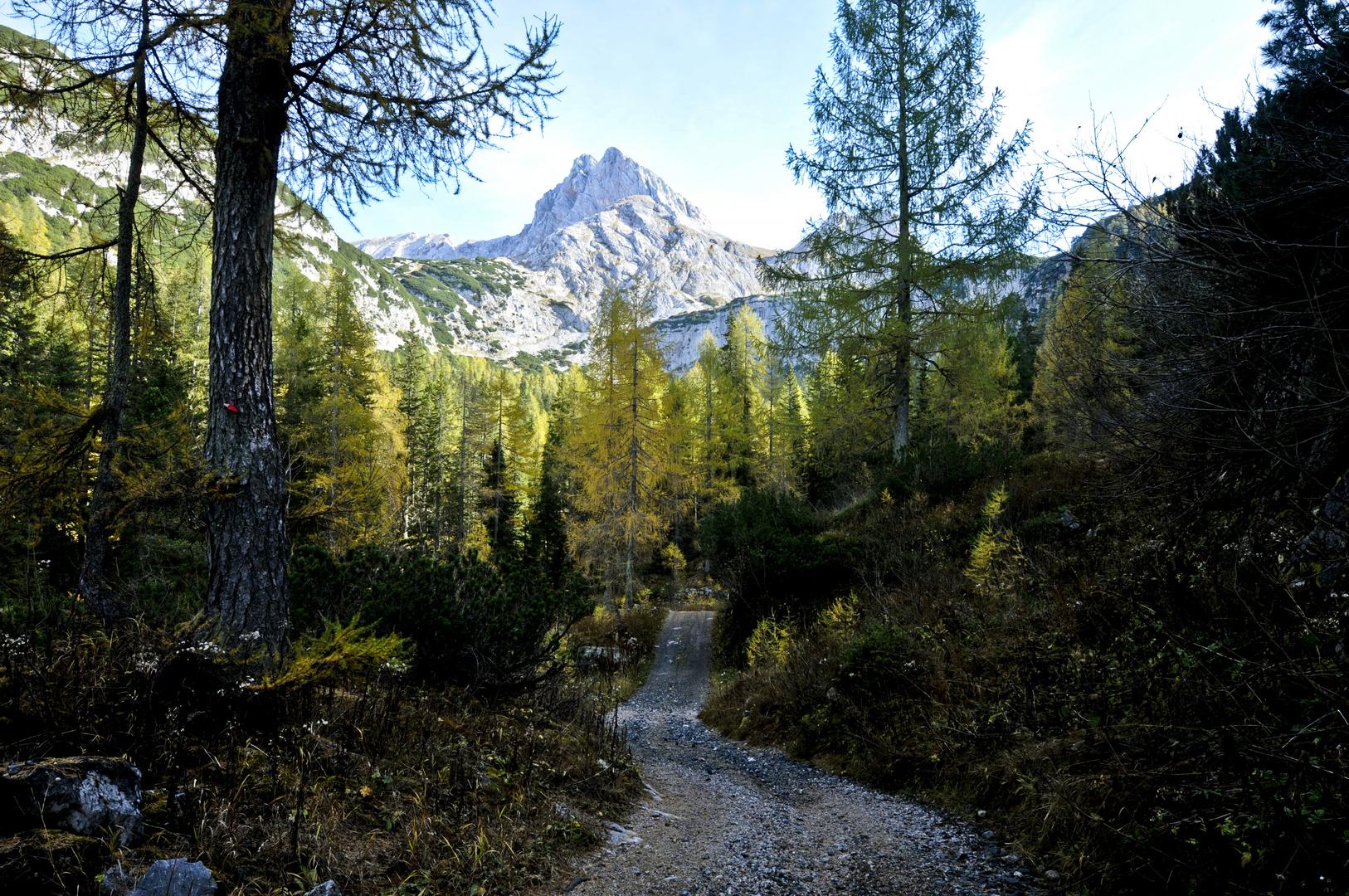 Der Weg zum Ingolstätter Haus