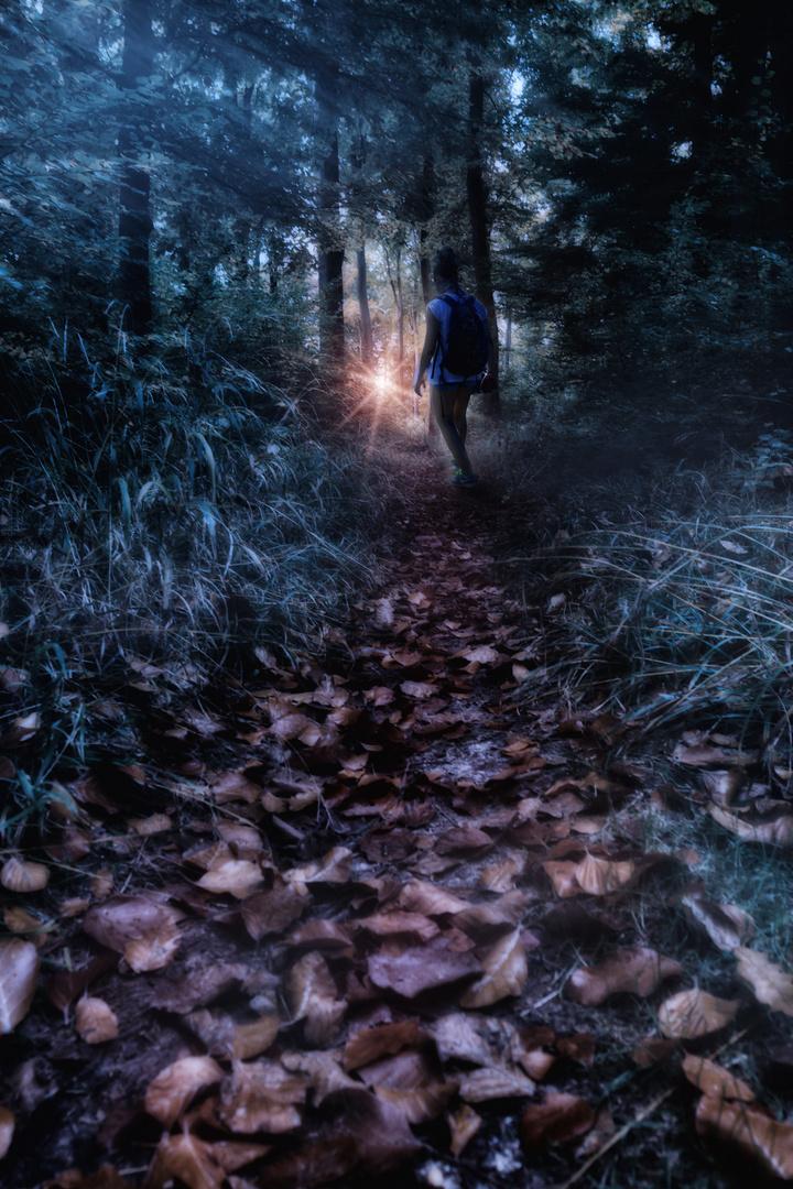 Der Weg zum Licht...