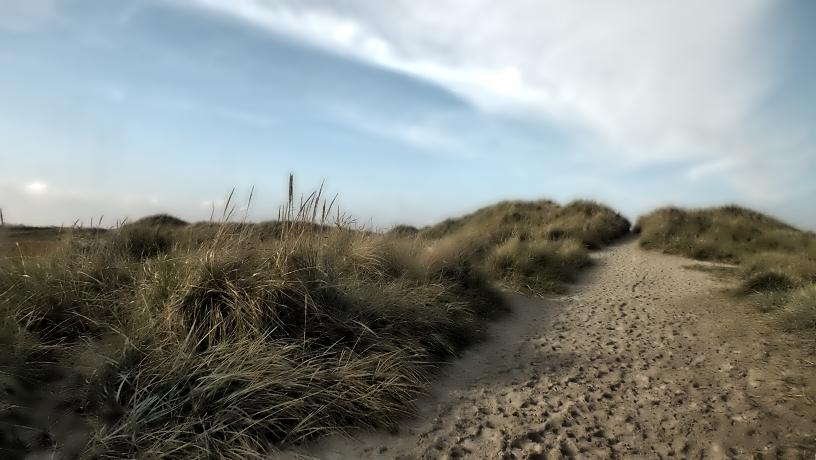 Der Weg zum Meer.....