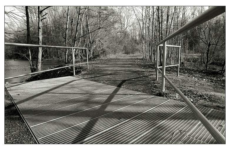 .. der Weg zum Wald ...
