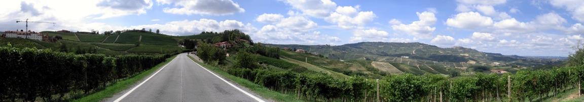 Der Weg zum Wein...