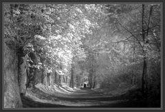 Der Weg zur Kapelle <Infrarot>