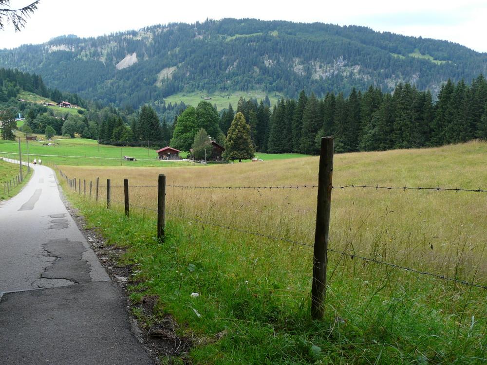 der Weg zurück ins Tal