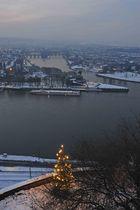 Der Weihnachtsbaum auf der Festung