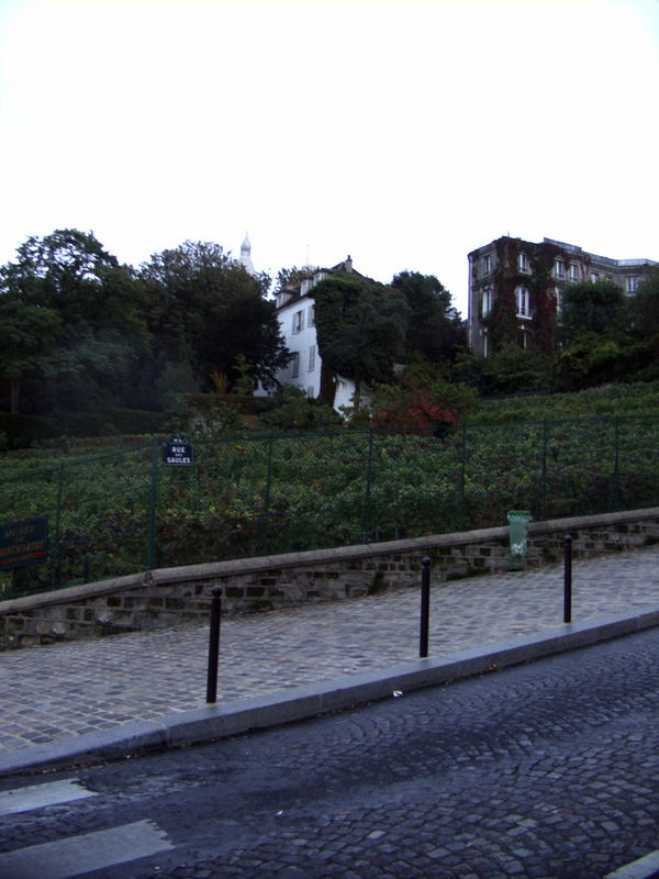 Der Weinberg am Montmartre