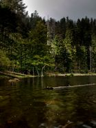Der Wilde See