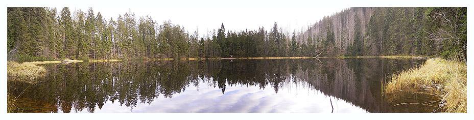 der wildsee in seiner ganzen schönheit