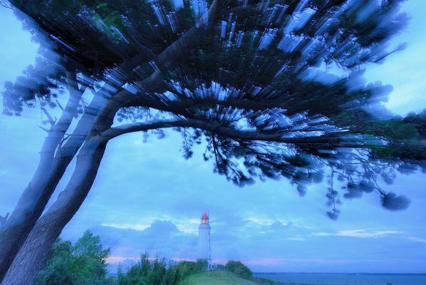 Der Windflüchter
