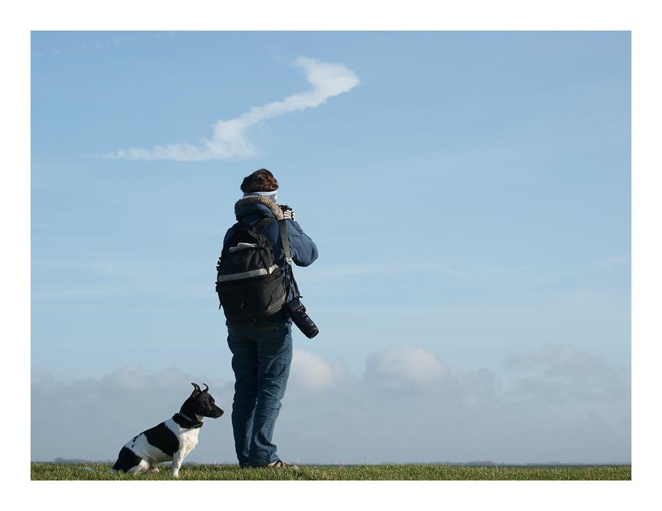 Der Windhund......