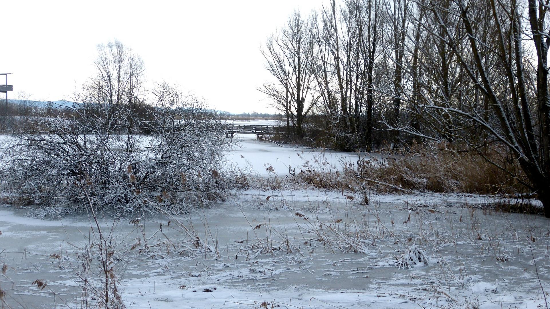 der Winter 4