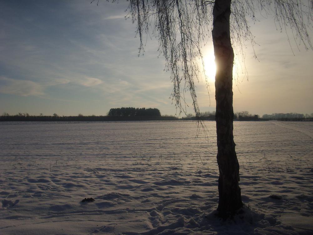 Der Winter....