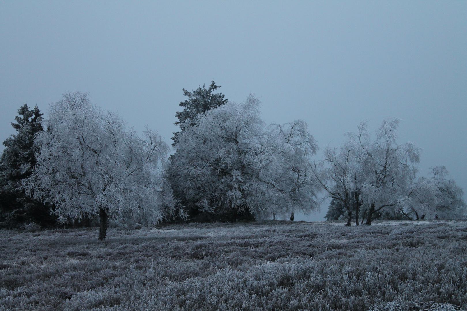 Der Winter hält einzug ins Sauerland