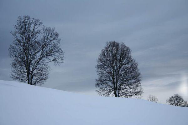 Der Winter hat auch schöne Seiten