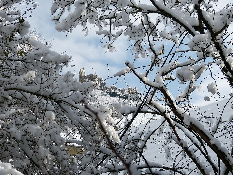 der Winter hat geliefert am Staufener Schlossberg