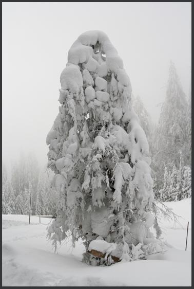 der Winter hat uns fest im Griff
