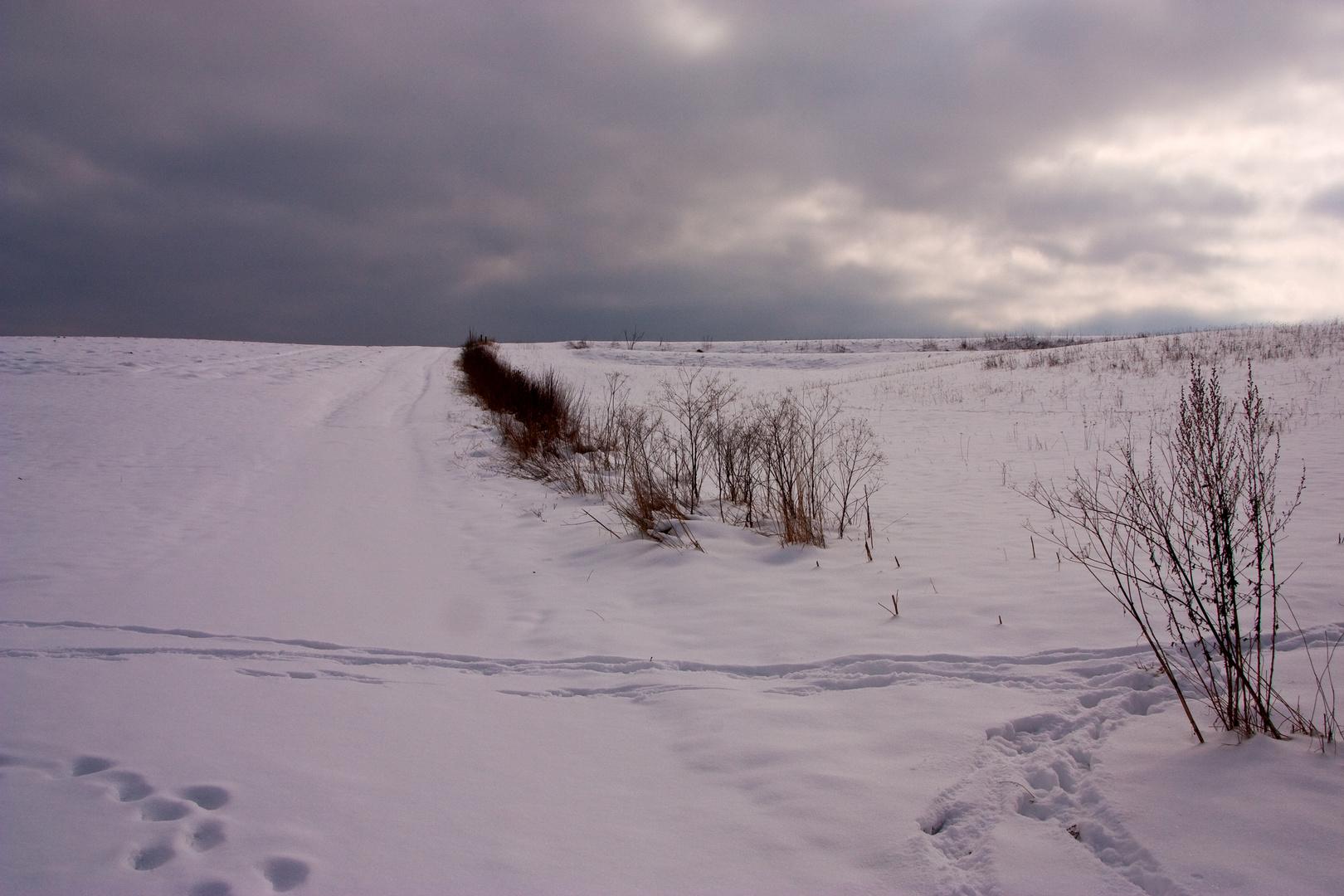 Der Winter hat uns voll im Griff